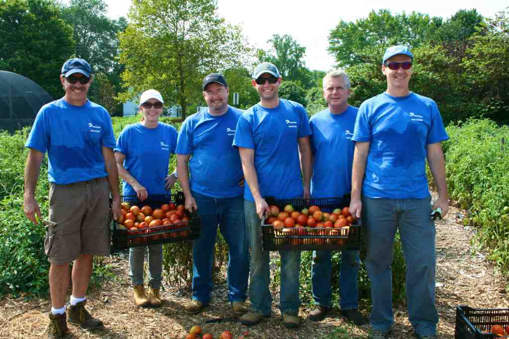 Dominion Team of Workers with tomatoes