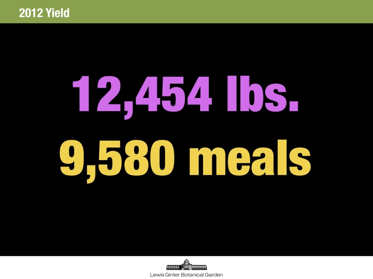 12,454 pounds of high quality, mostly organic fresh vegetables. The number of meals is based on a USDA factor (1.3 lbs. of vegetables constitutes a meal equivalent).