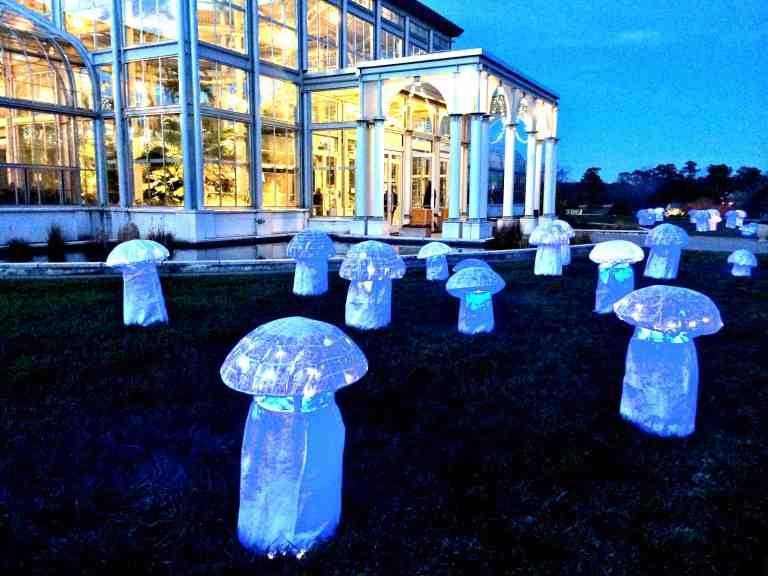 Nuclear mushrooms
