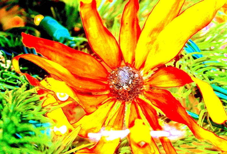 Flower Flambeau